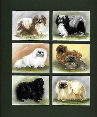 PEKINGESE Collector Cards New Mounted Ready for Framing 10 ½ x 9""