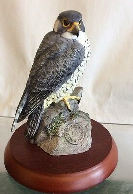"Border Fine Arts Peregrine Falcon "" Symbol Of Loyalty """
