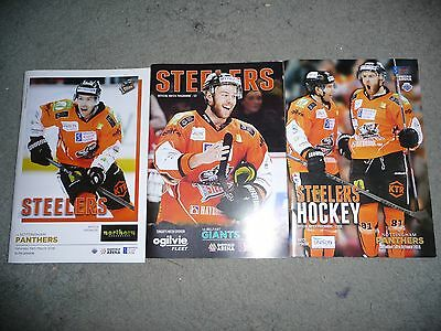Sheffield Steelers Ice Hockey Programme - set of 3 -Panthers 19th March PRISTINE