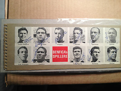RARE BENFICA 1961/1962 SQUAD HAND SIGNED CLIPPING with COA