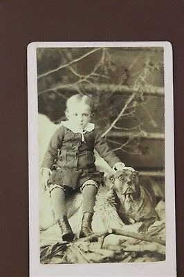 ANTIQUE CDV Carte De Visit young Boy & His Dog Outside Slicked Hair Trees