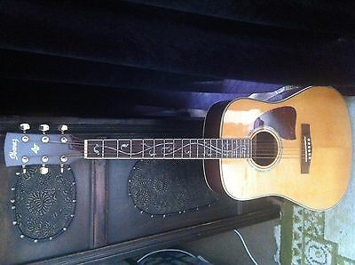 Ibanez Guitar Aw40Nt
