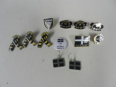 Small collection of Cornwall badges + earrings