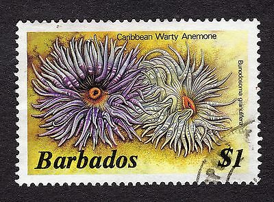 1985 Barbados $1 warty anemone SG806b FINE USED R31616
