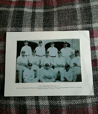Photo of the Yorkshire cricket team of 1901