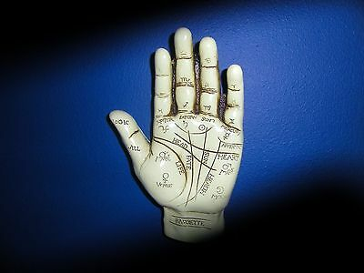 PAGAN wiccan OCCULT CURIO PALMISTRY HAND AND REFLEXOLIGY SKULL WITCHCRAFT WEIRD