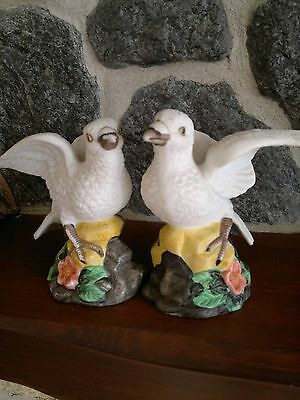 PAIR OF TURTLE DOVES (excellent condition) Height approx 4 1/2ins  GORGEOUS.