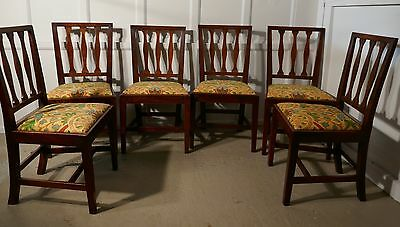 Set of 6 Georgian Elm Country Dining Chairs