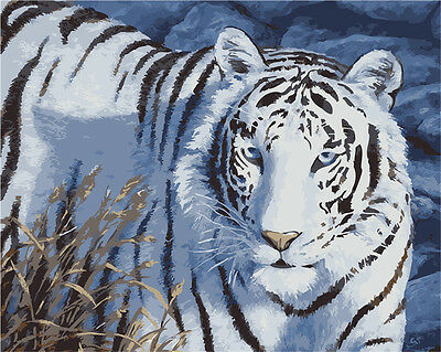 "16X20"" Paint By Number Kit DIY Acrylic Painting on Canvas Tigers 1140"