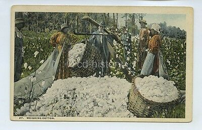 Black Workers Weighing Cotton On Plantation Southern USA - Postcard Coovert 1911