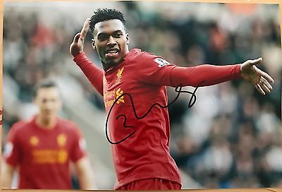 Daniel Sturridge Liverpool Fc Reds Hand Signed 12X8 Photo