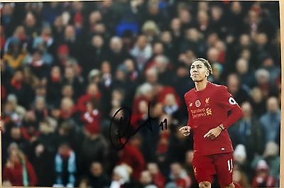 Roberto Firmino Liverpool Fc Reds Hand Signed 12X8 Photo
