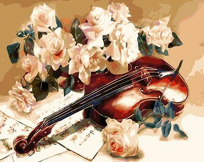 "16x20"" DIY Acrylic Paint By Number kit Oil Painting On Canvas Violin Flower 1088"