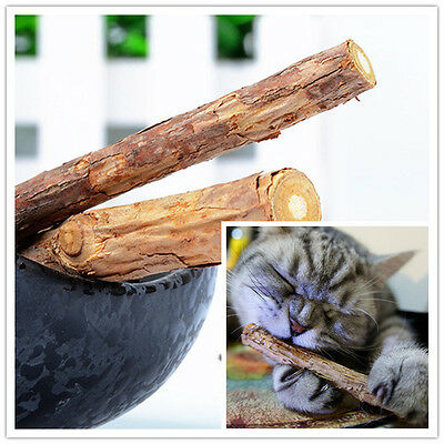 Cat Tooth Cleaning Tasty Stick Catnip Cat Snacks Green