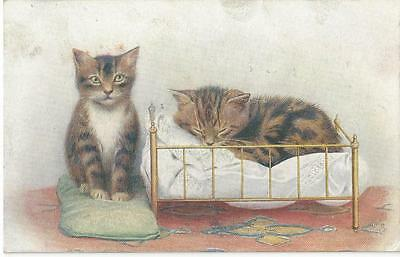 """""""cat Land"""" Two Pretty Cats - One Asleep In Bed Tuck Oilette Vintage Postcard"""