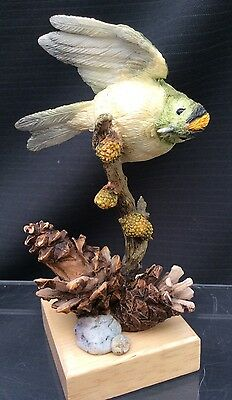 Country Artists- Goldcrest On Pine Cones