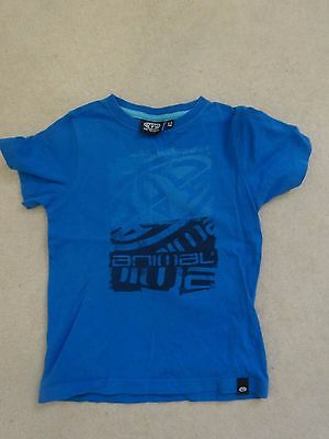 Boys Animal Blue T-Shirt - Age 5 to 6 years