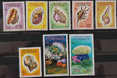 Comoro Islands 1962 Set Postage Shells Air Coral Clam MNH SG23-30
