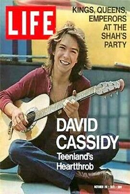 1970s David Cassidy Life Magazine cover replica fridge magnet - new!