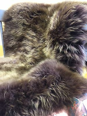Genuine Light Chocolate Wolf Tip rug XL Single size eco pelt Sheepskin   Fur