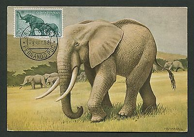 GUINEA ESPANOLA MK 1958 ELEFANT ELEPHANT MAXIMUMKARTE MAXIMUM CARD MC CM d2549