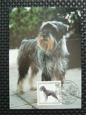 BUND MK HUND SCHNAUTZER DOG DOGS MAXIMUMKARTE CARTE MAXIMUM CARD MC CM c4783