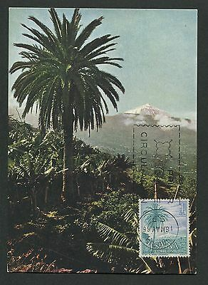 SPAIN MK 1966 TENERIFFA OROTAVA TEIDE PALM PALMEN CARTE MAXIMUM CARD MC CM d3948