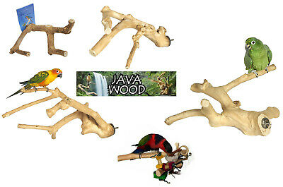 Java Hard Wood Multi Branch Parrot Cockatiel Budgie Finch Bird Cage Perch 4 Size
