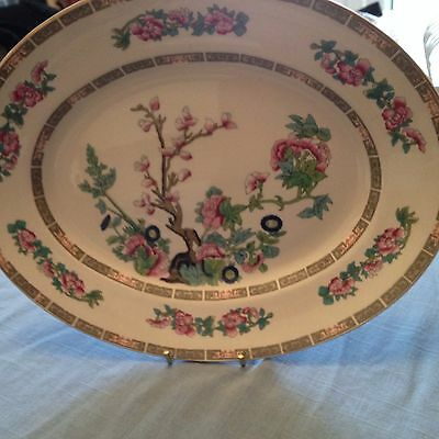 Maddock Indian tree oval plate in excellent condition