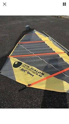 windsurfing Dagger Board 365 With 2 Sails, Mast And Boom.