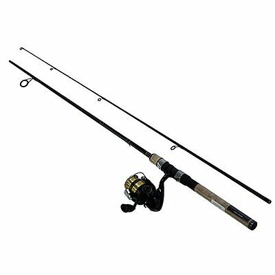 Daiwa D-Shock Spinning Combo 6' Rod with 2000sz Reel DSK20-B/F602ML