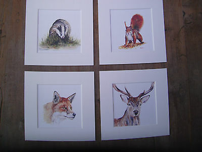 """Fox  Prints NEW SET  x 4 Watercolour Hare,Stoat,Fieldmouse in mounts  6/"""" x 6/"""""""