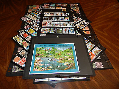 Nicaragua stamps - HUGE lot of 642 mint hinged & used early stamps - excellent !