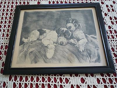 """Vintage Pen & Ink Drawing Print of Jack Russell Puppies """"Sympathy"""" Paw Bandaged"""