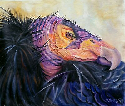 """CONDOR  oil on canvas 22X28"""" original painting  of this awesome bird of prey."""