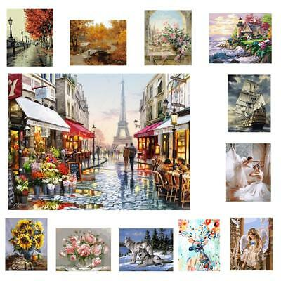 Frameless DIY Digital Oil Painting By Number Kit Canvas Paint Home Decor 12Style