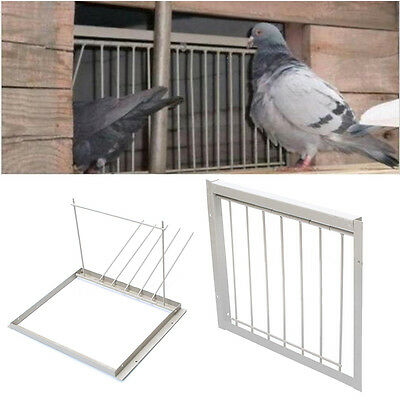 40x26cm Wires Bars Frame Racing Pigeon Entrance Fantail Tumbler Loft Bird Supply