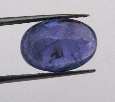 Tanzanite Cabochon 7,69 ct misura 10x14 mm