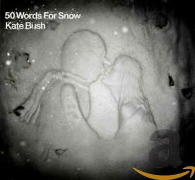 Kate Bush - 50 Words for Snow - Kate Bush CD WKVG The Cheap Fast Free Post The