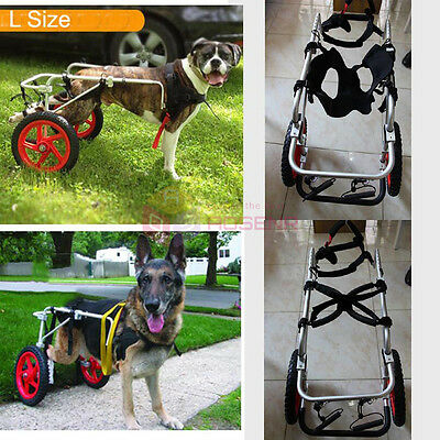 Pet Wheelchair For Handicapped Doggie Puppy Cart Dog Cat Light Weight M-L Size