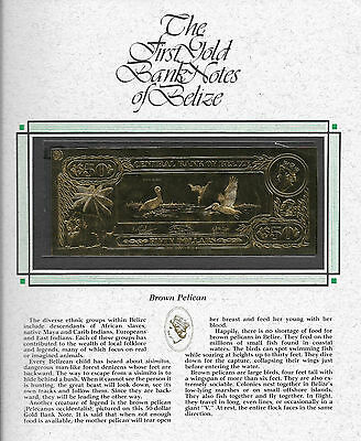 $50 Brown Pelican The First Gold Bank Notes Of Belize