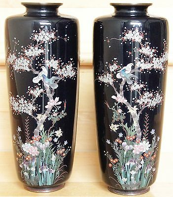 Japanese Cloisonne Meiji Period Pair of Vases with Birds and Blossom Sprays.