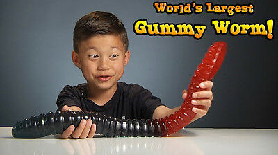 WORLD'S Largest Gummy Worm Giant Candy- YOU CHOOSE FLAVOUR!!