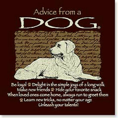 LEANIN TREE Advice from a Dog #26341 Magnet~Unleash Your Talents~Be Loyal~
