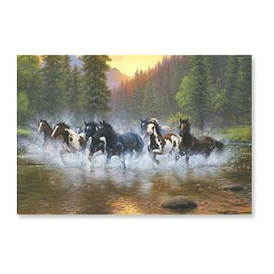 LEANIN TREE Herd of Horses Running in Water #25933 Refrigerator Magnet ~