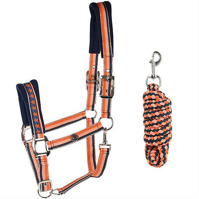 Harry's Horse Halter Set - Stripe in Blue, Coral, Purple