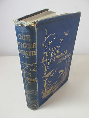 Our Summer Migrants Migratory Birds by J.E. Harting 1889