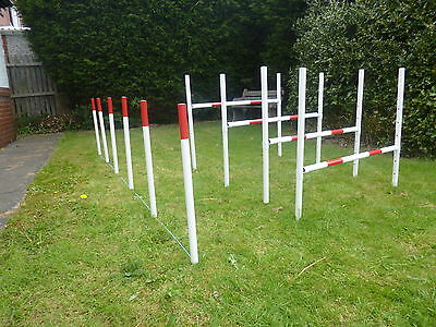 johns agility,dog agility,training jumps,weaves,obedience,pet supplies,exercise.