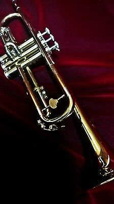 Vintage Usa Holton Collegiate T602 Trumpet Professionally Overhauled W/ Warranty