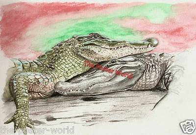 Set Of 2 crocodile watercolour Painting image Picture Poster Wall Art Print New
